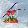 приму в дар или куплю фрирайдные лыжи - последнее сообщение от Agata