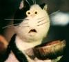 Не пора ли нам вставать на роллы)) - последнее сообщение от Cat_Behemoth