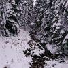 Банско, 28 ноября 2015г. Первый снег в горах.