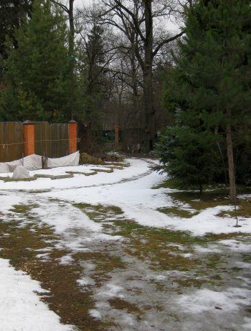 снег 20 янв