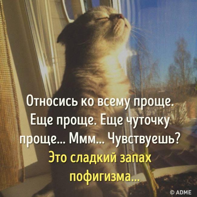 59e1b3bf10af4_13533029_10153750256965172