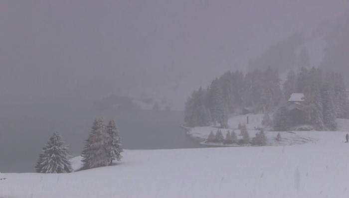 5bd45e5f1537b_snow27_10.jpg