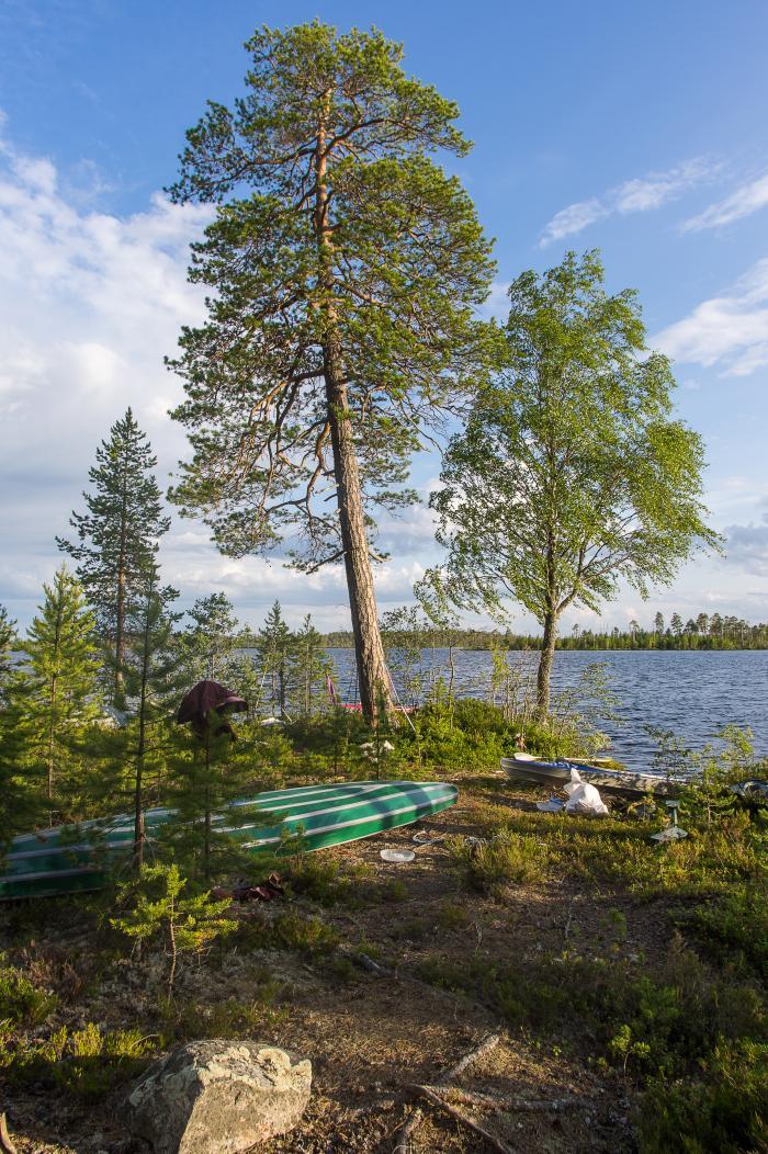 55bcfc0a4c3b1_Karelia0117.jpg