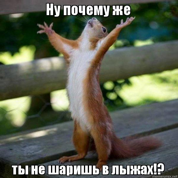 Фотография IrinaP