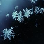 Фотография Snow Queen