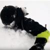 Помогите выбрать сноуборд для фрирайда и трасс - последнее сообщение от Привет