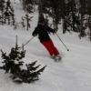 Куплю чехол для горных лыж - последнее сообщение от *major*