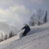 Снежком - последнее сообщение от LiFoxy